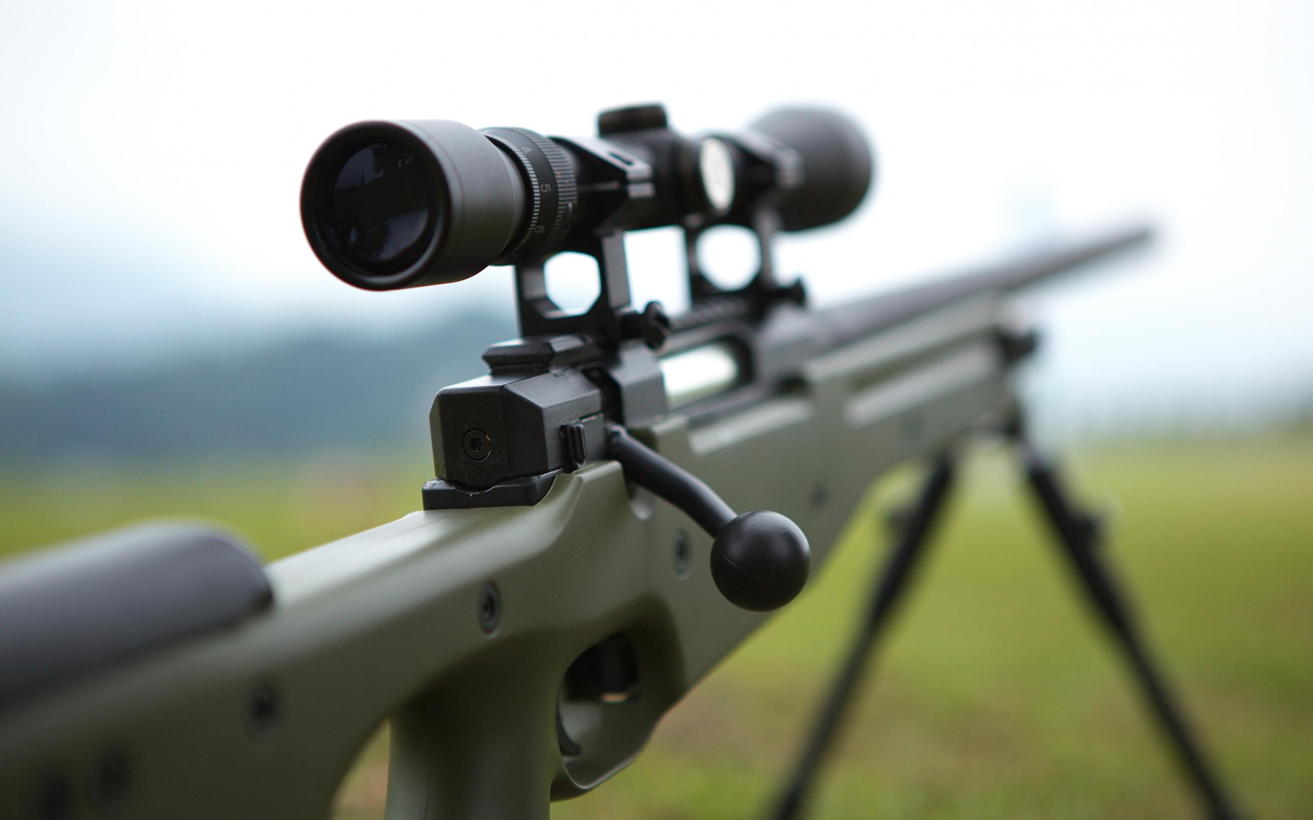 magnum sniper rifle - HD2560×1600