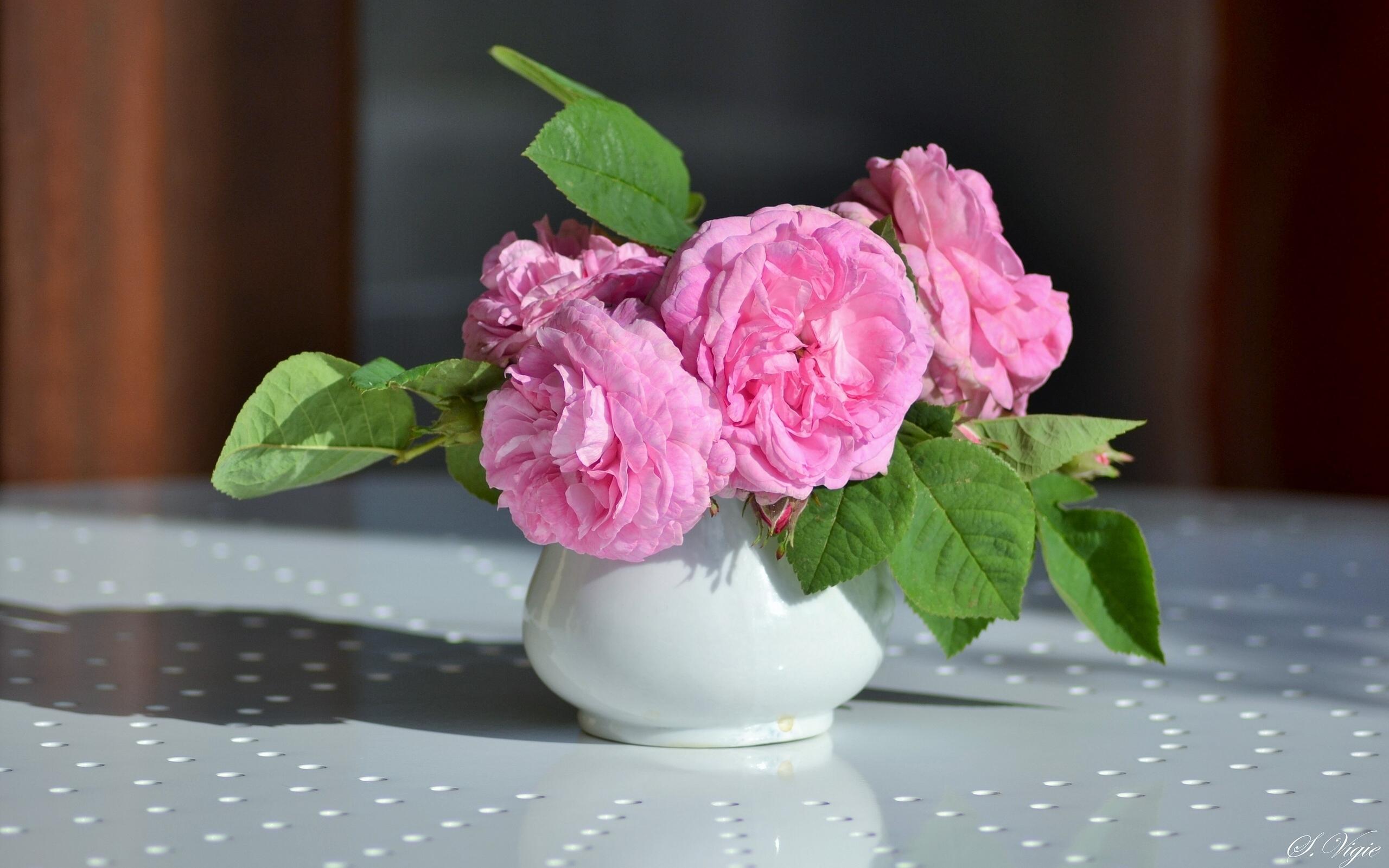 розы цветы ваза  № 1332600 без смс