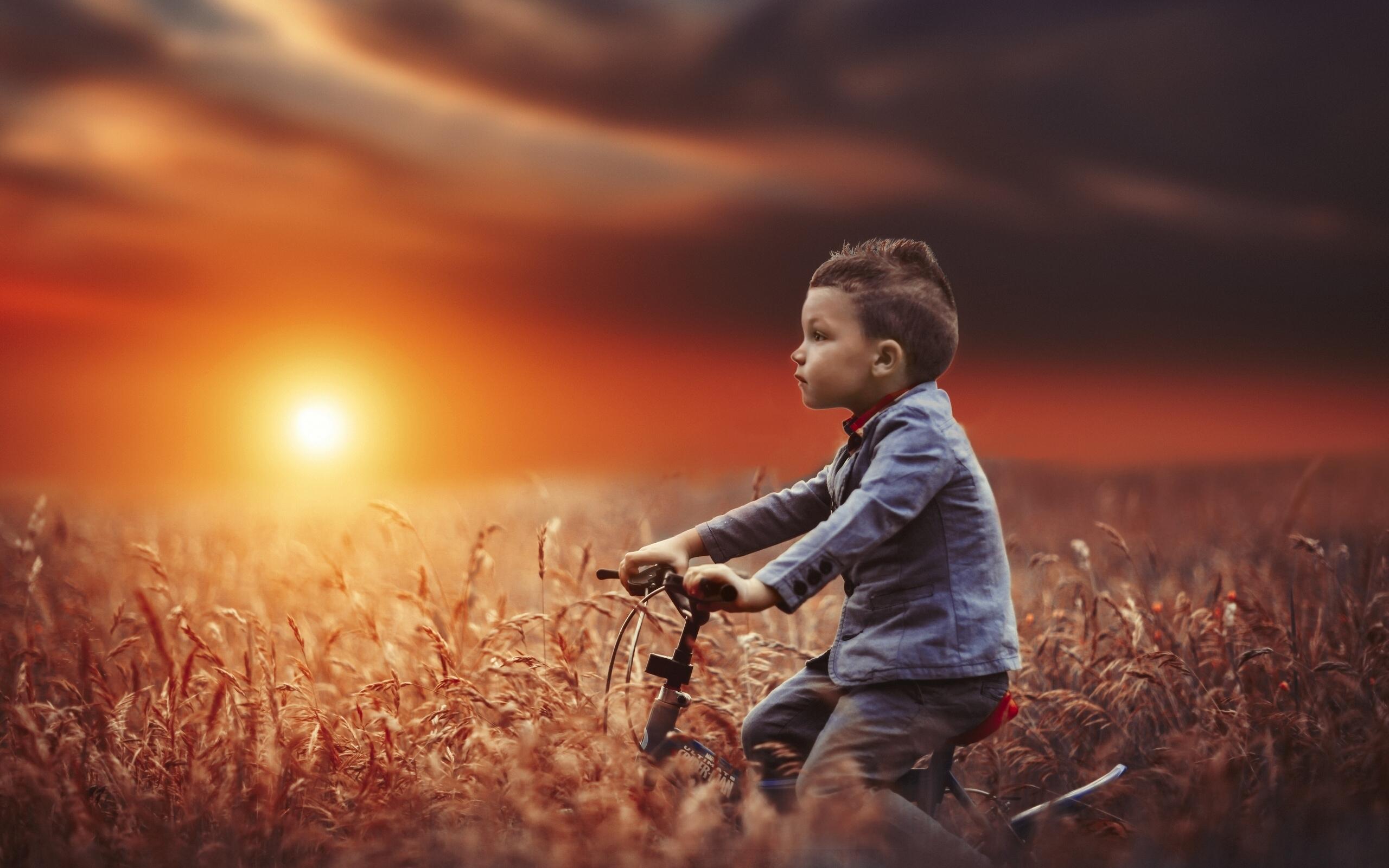 Мальчик в поле картинки