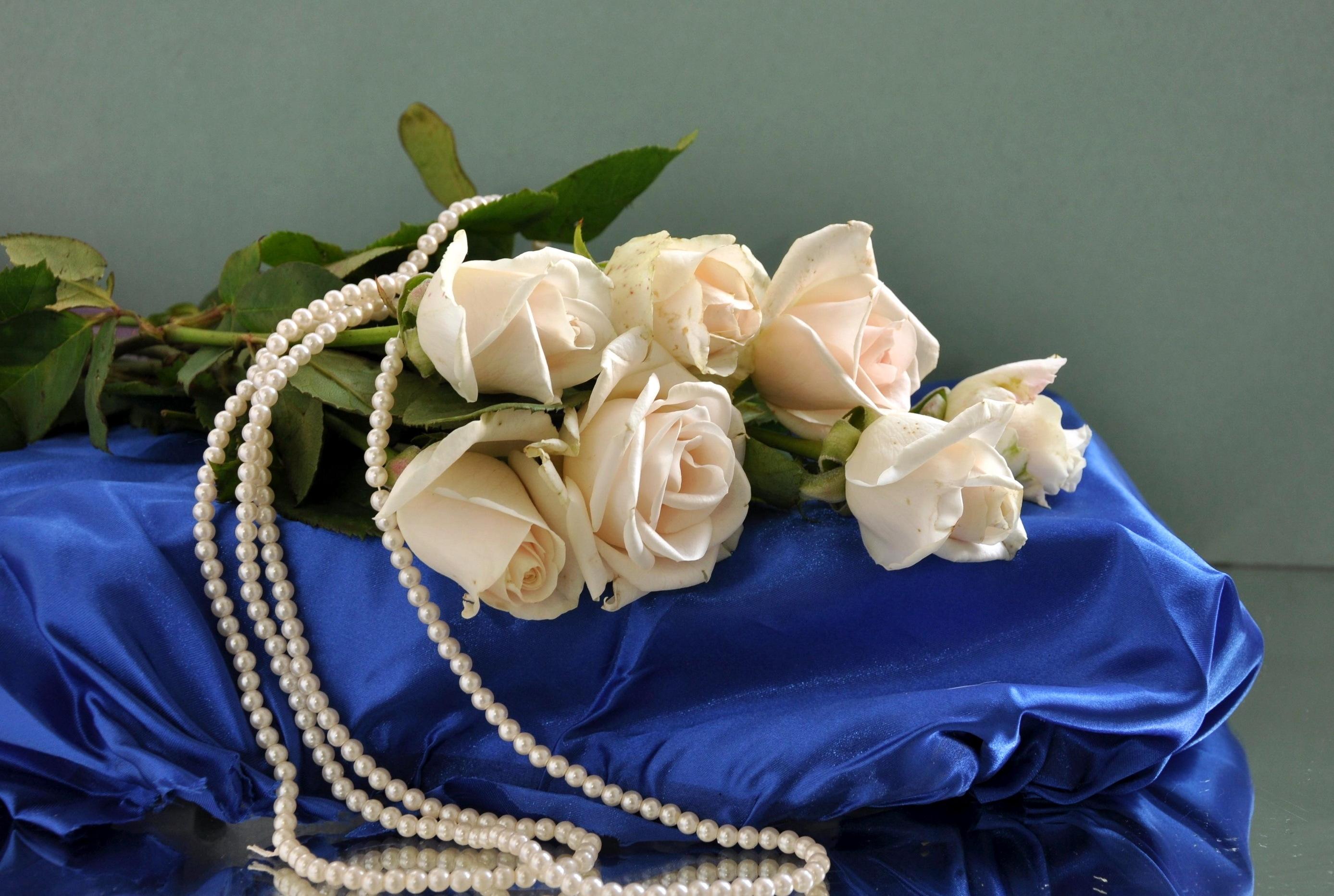 обои на рабочий стол розы и жемчуг скачать бесплатно № 126445 без смс
