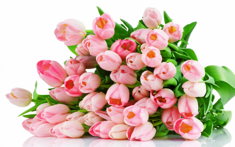 Открытка с красивым букетом тюльпанов, днем землеустроителя
