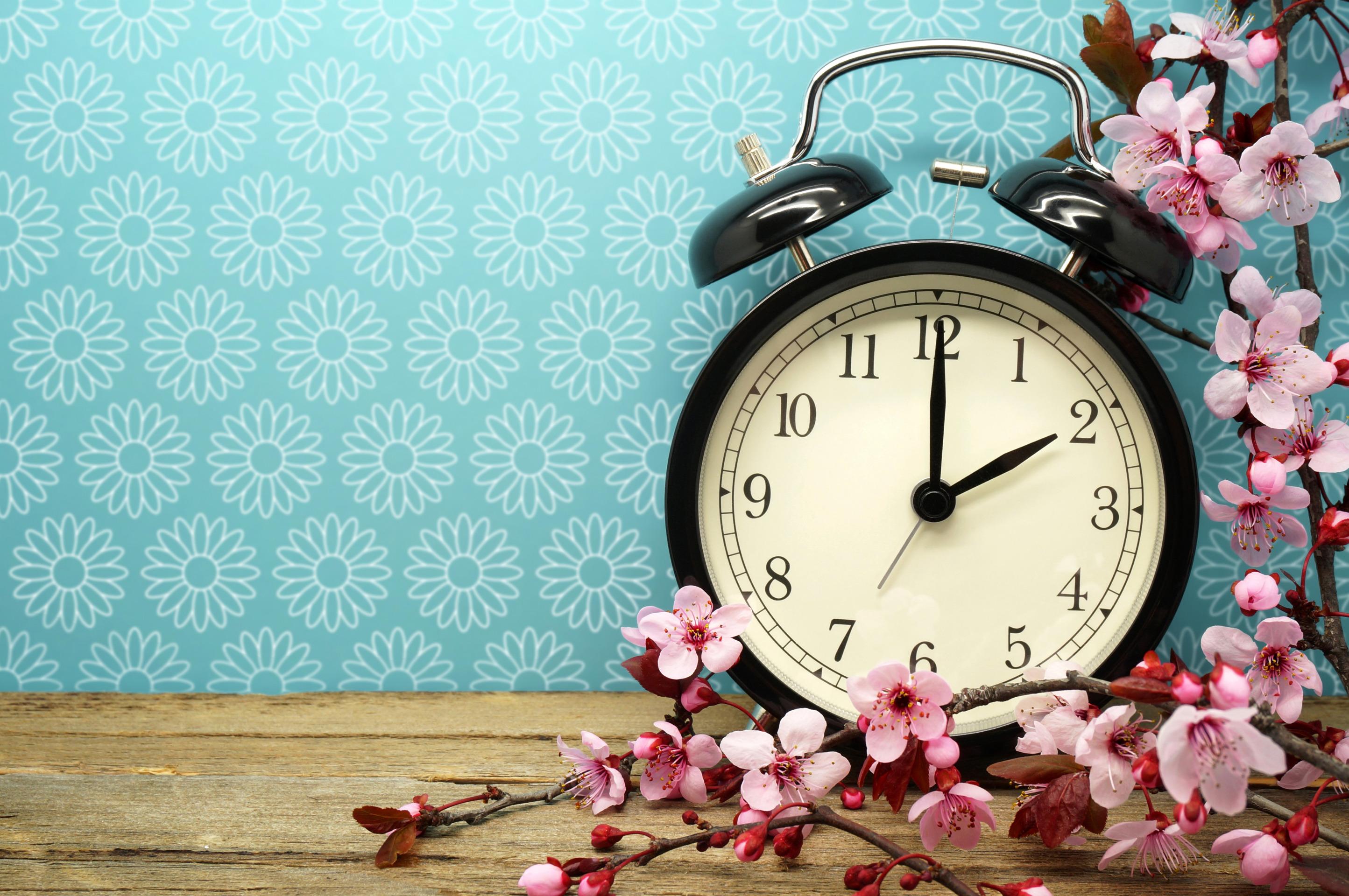 природа цветы часы  № 1520709 бесплатно