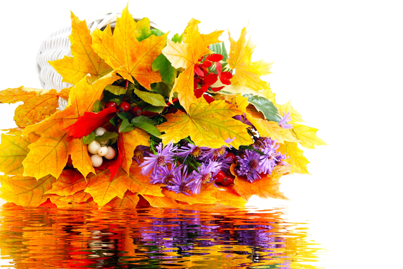 Открытки с днем рождения женщине осенние цветы