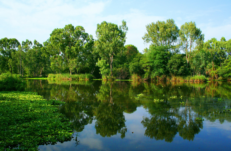 Видео картинки природа речка, мстители картинки