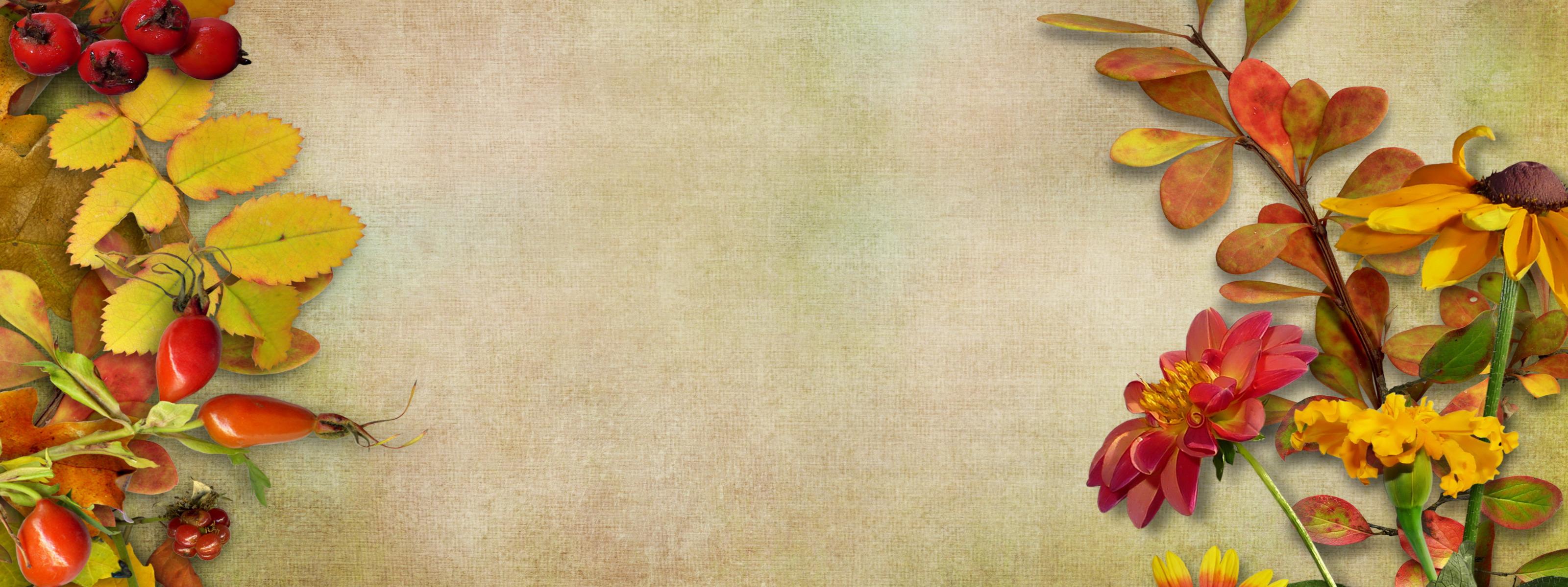 Надписями, открытки с осенними цветами без надписей