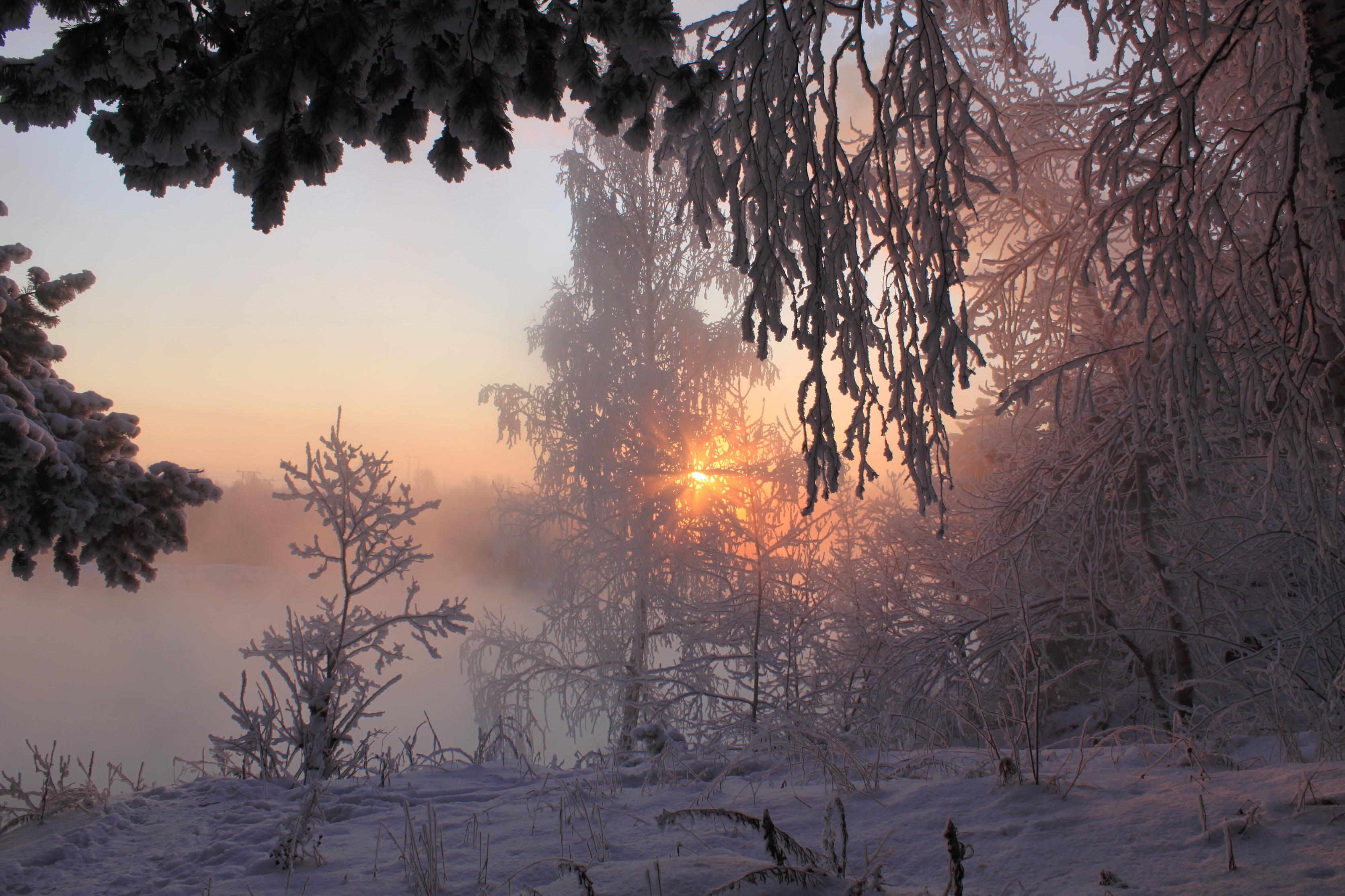 Смешная картинка, картинки оптимистам в снежное февральское утро
