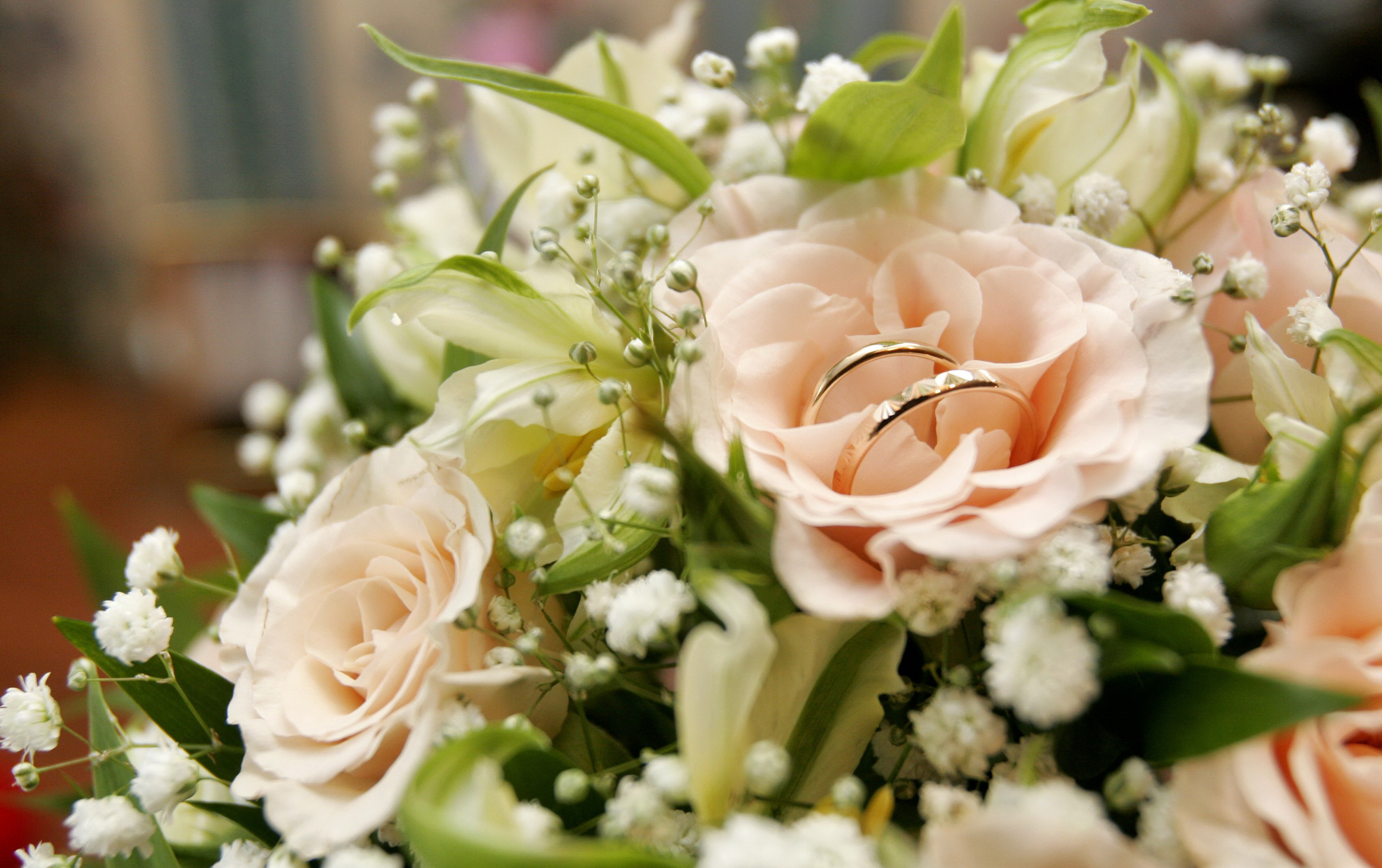 нежно-кремовые свадебные розы  № 1322977 бесплатно