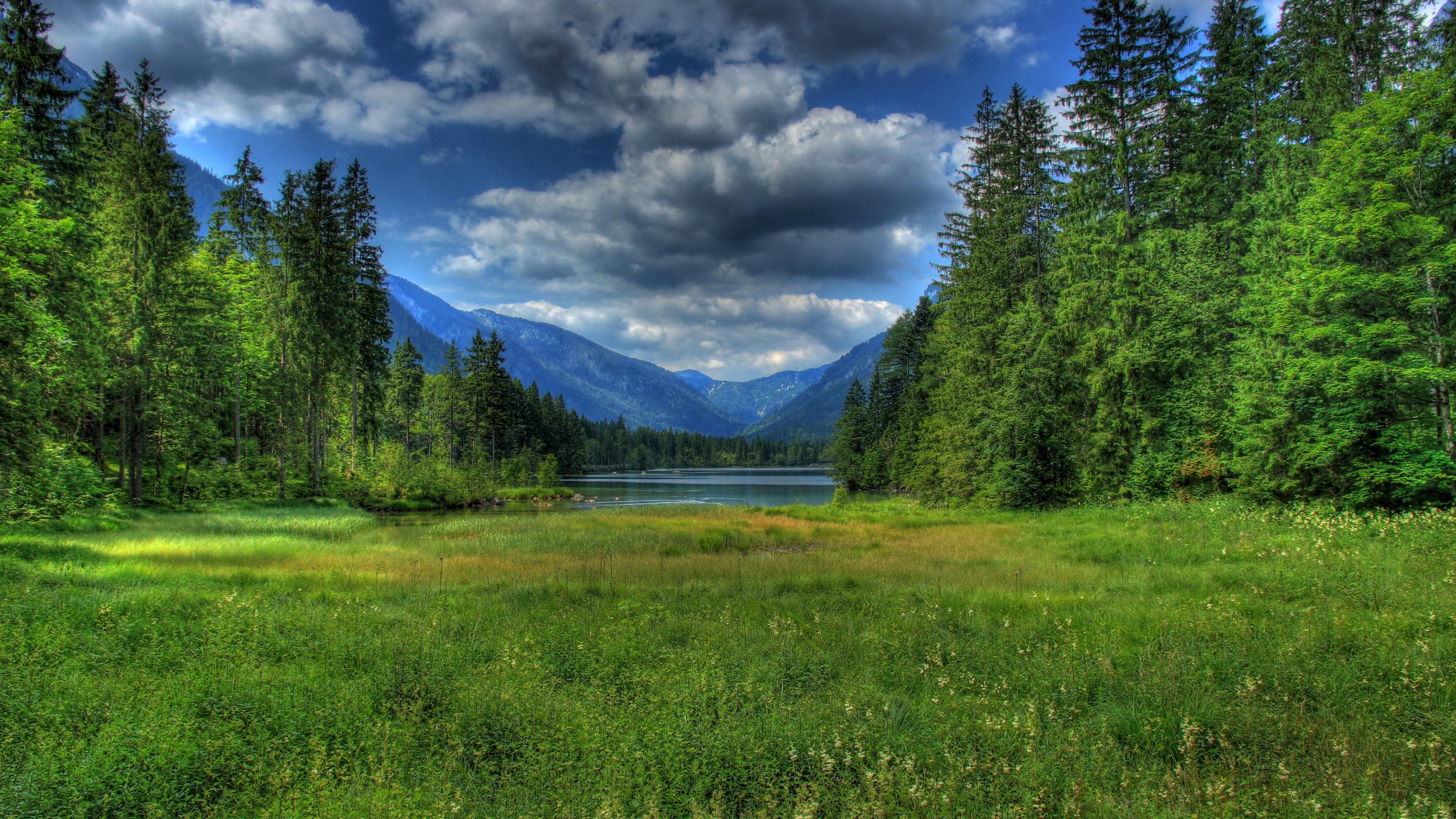 Облака, трава, цветы, озеро  № 1963112  скачать