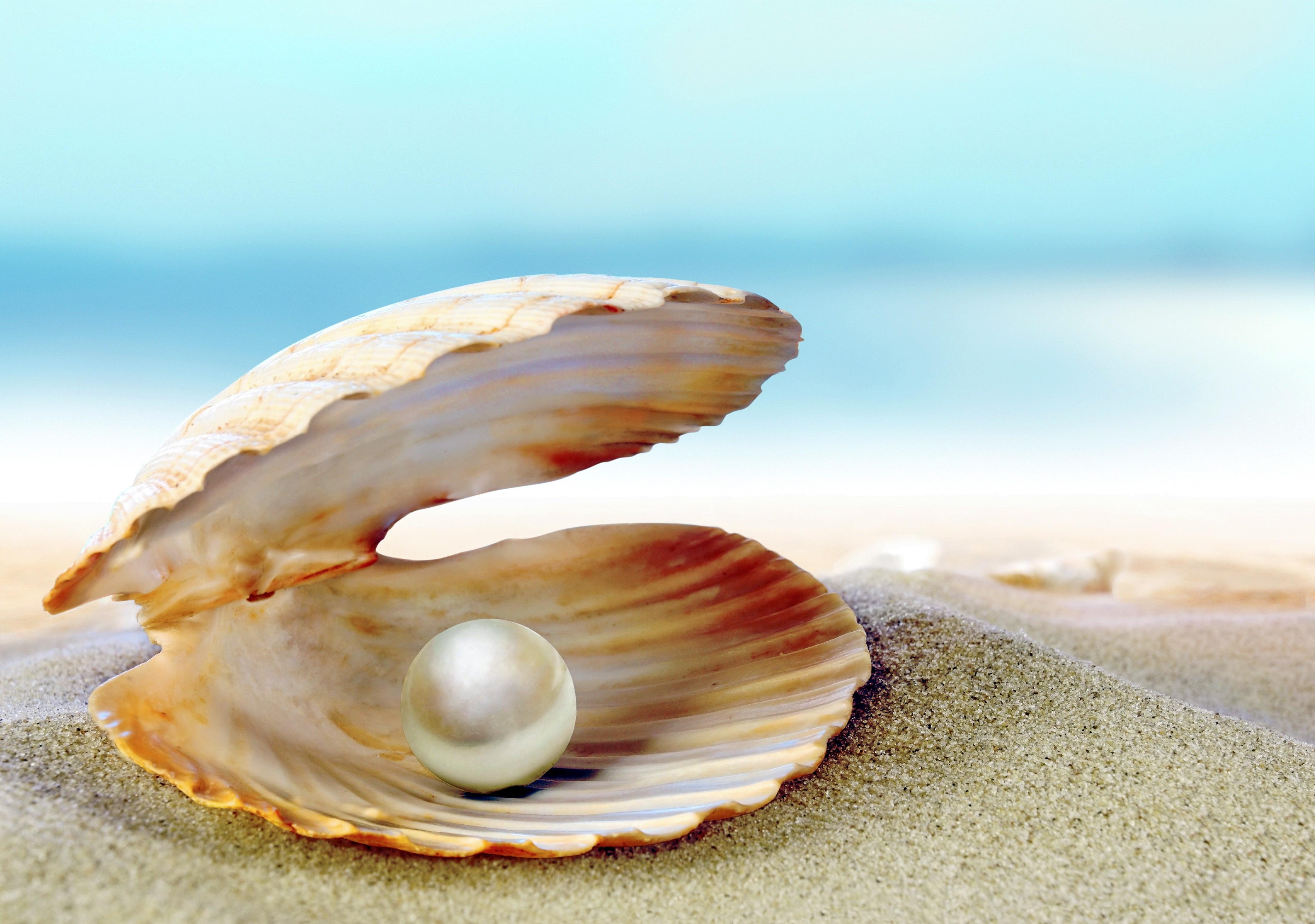 Фотосессия морская тематика на природе мучился