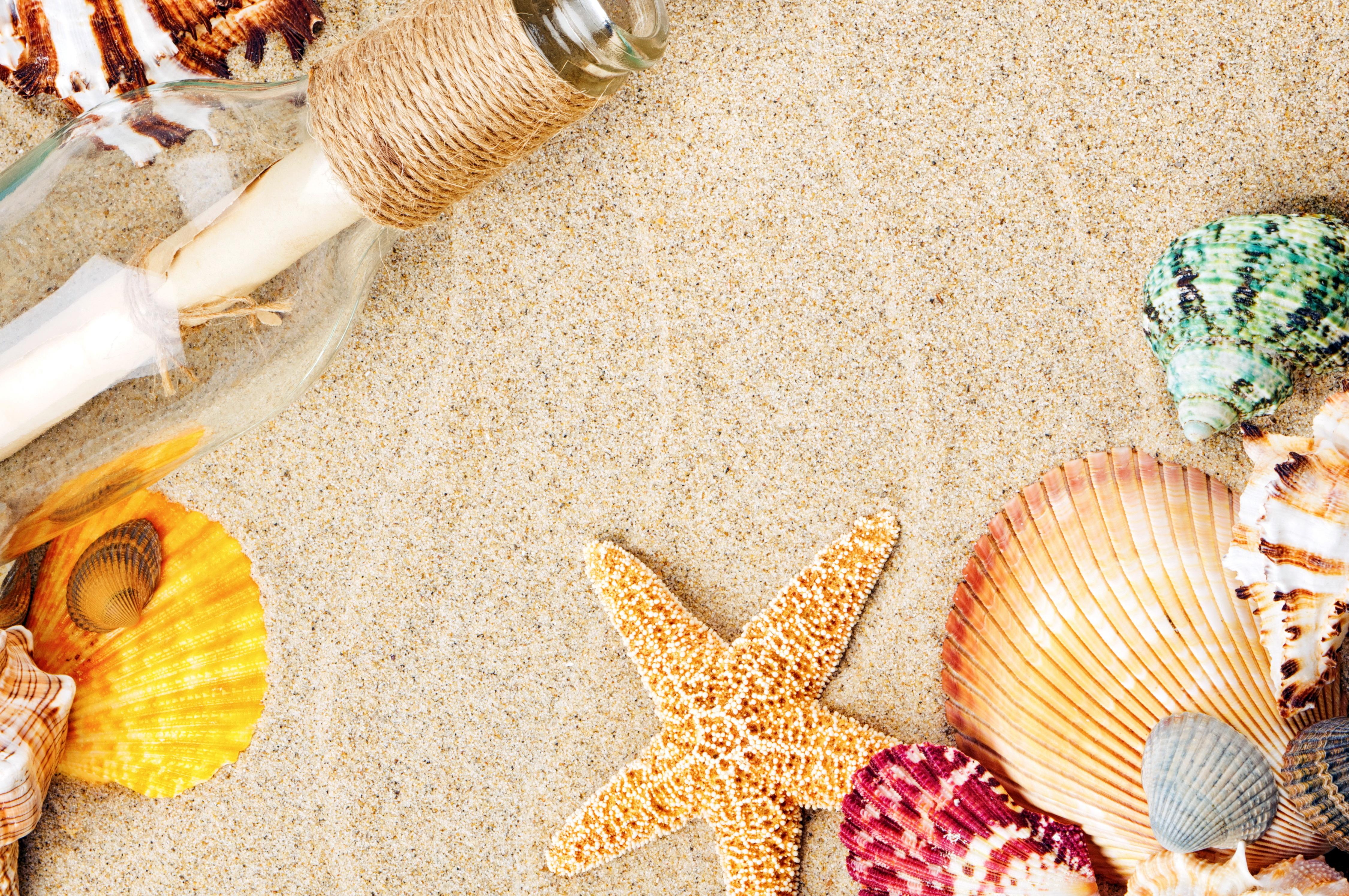 красивая картинка море песок ракушки тяжелые желтые
