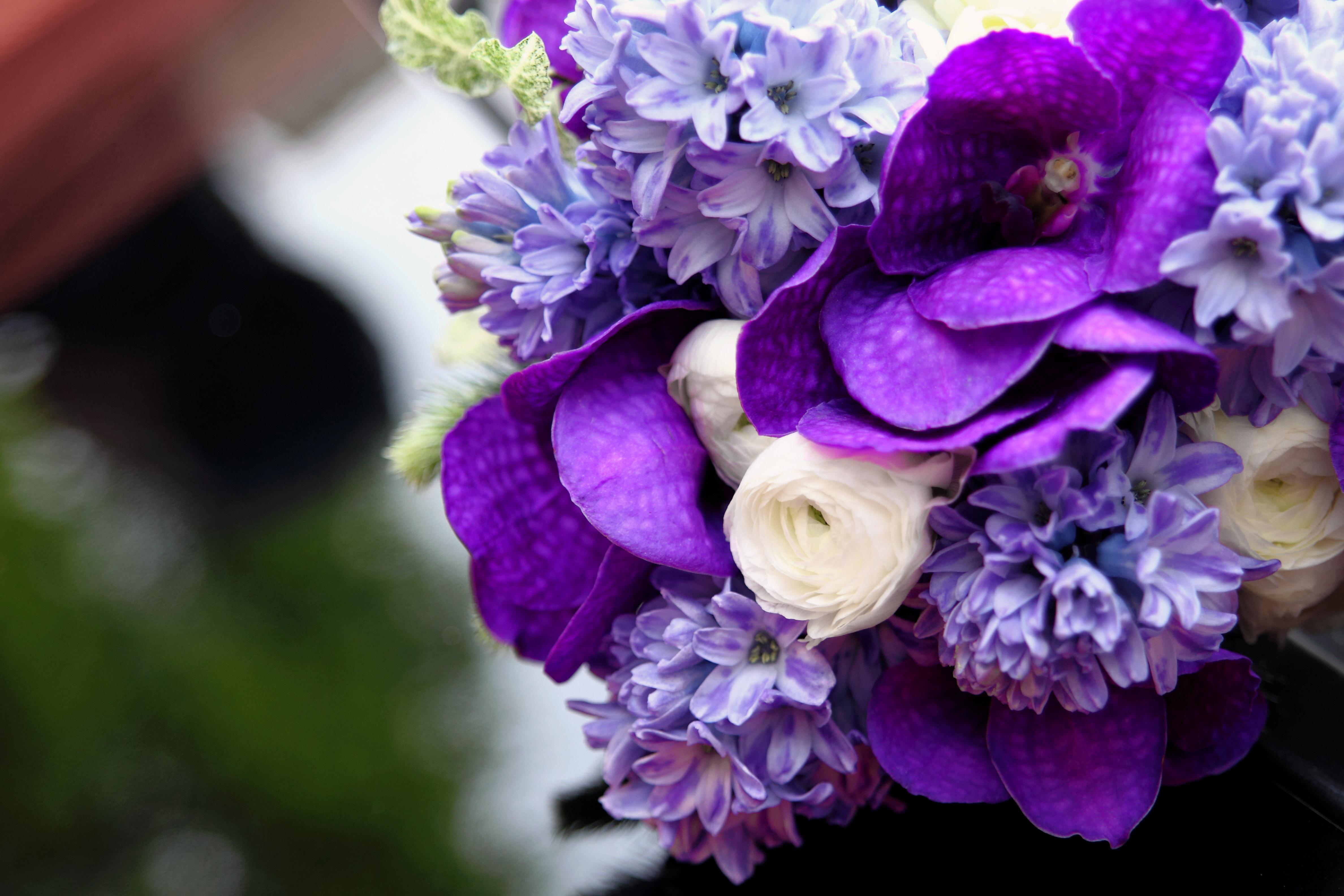 Цветы в сиреневых тонах