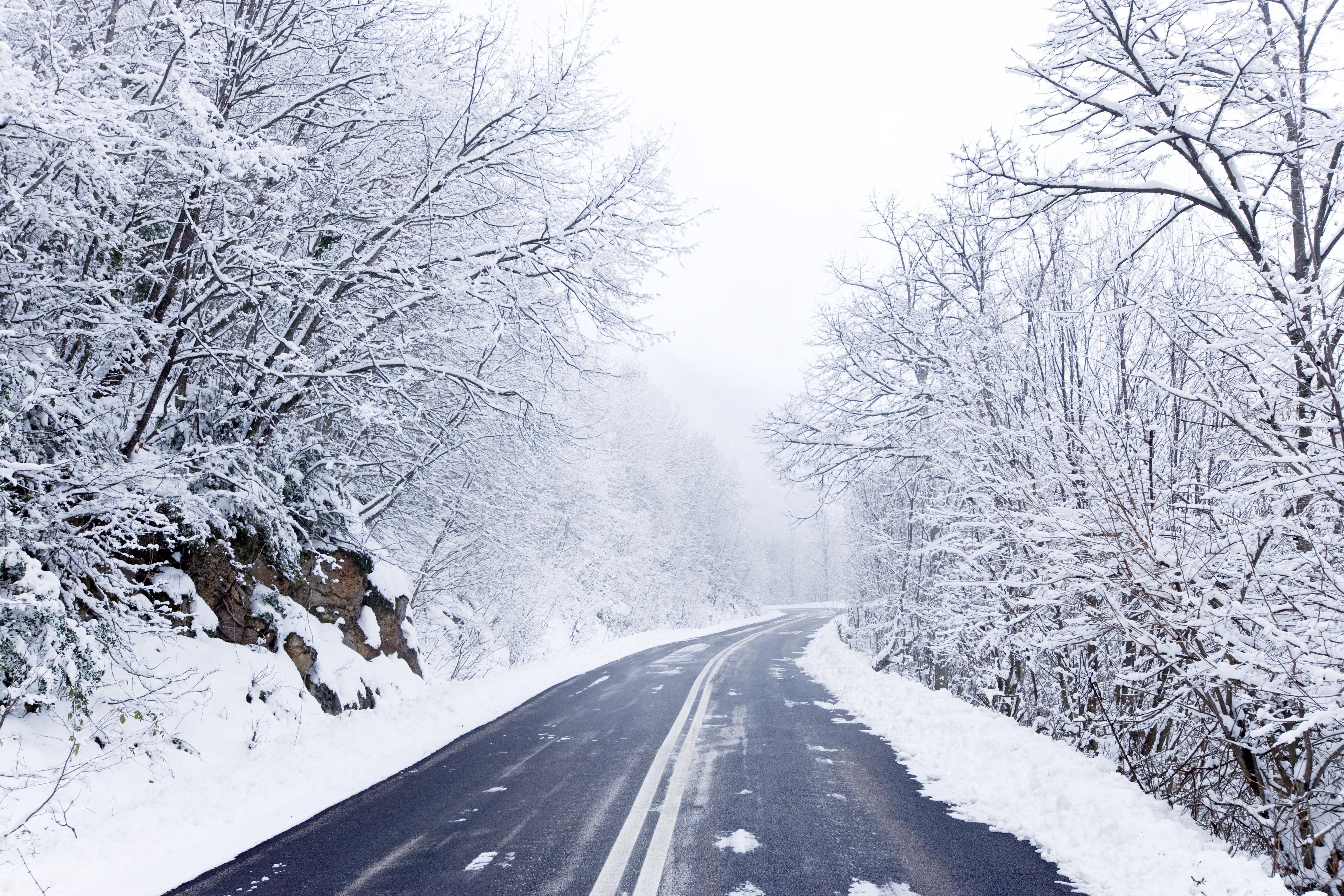 заснеженная дорога красивые фото некоторых это
