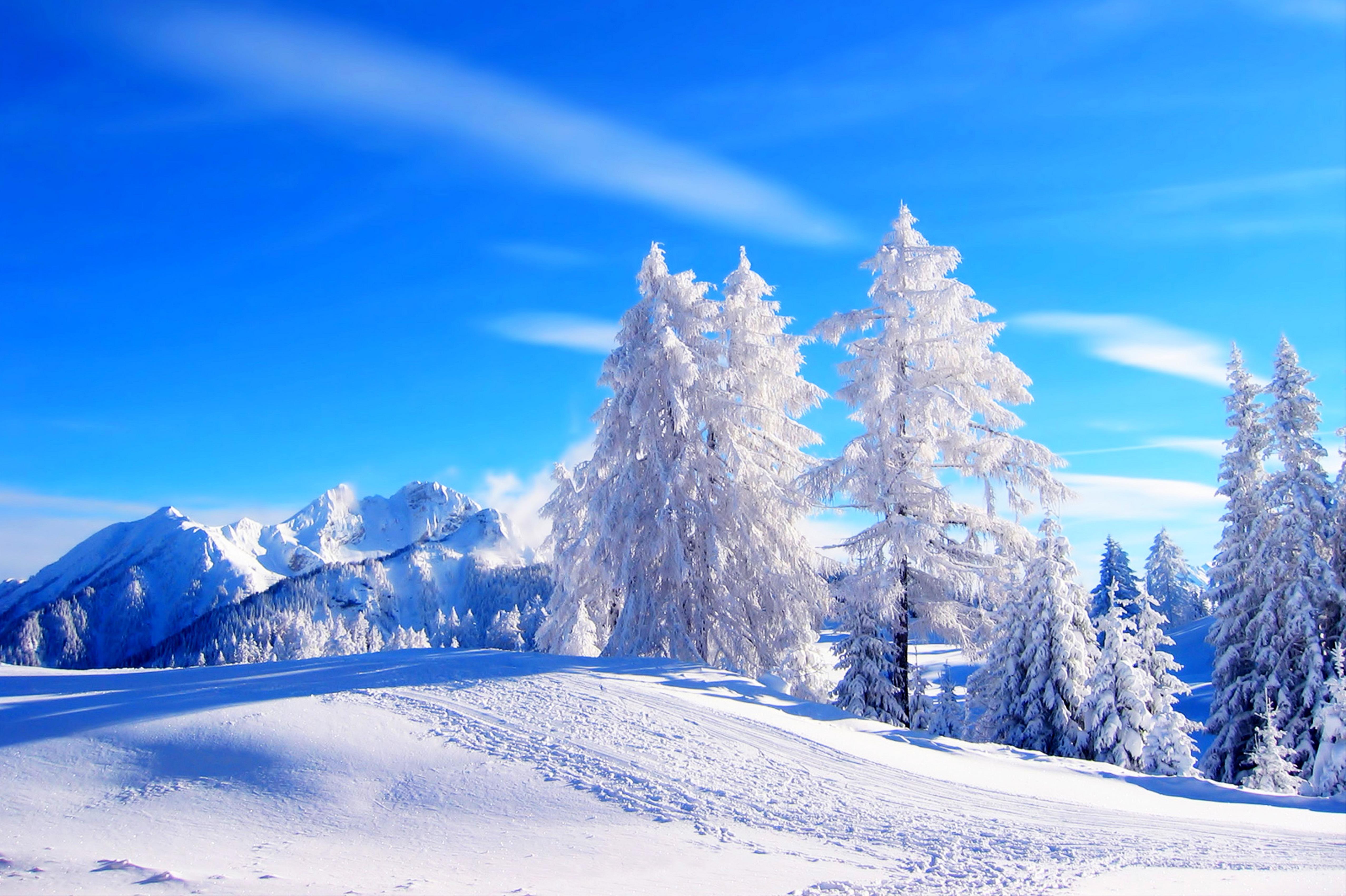 Картинки красивые пейзажи зимы