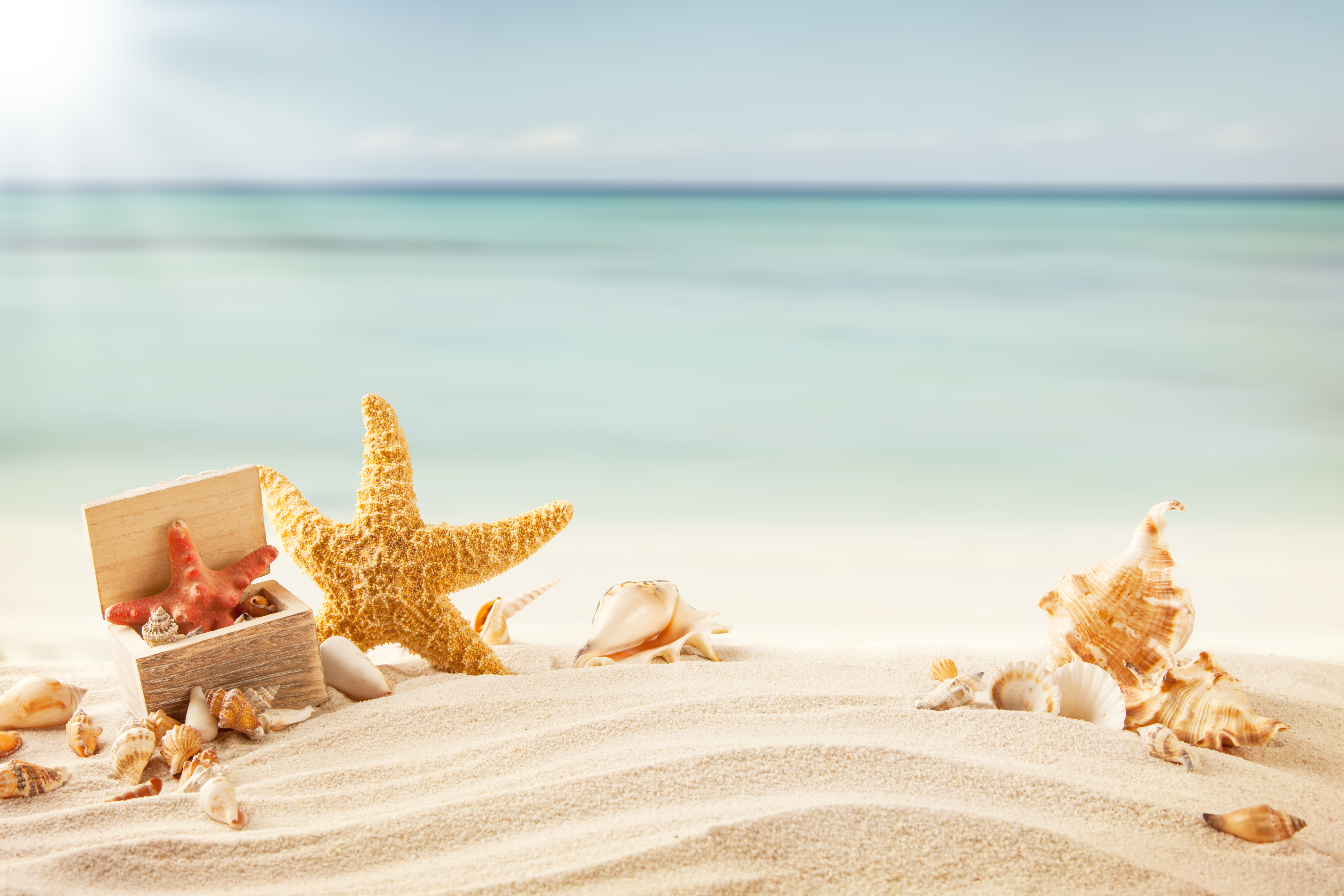 Летию, море пляж открытка
