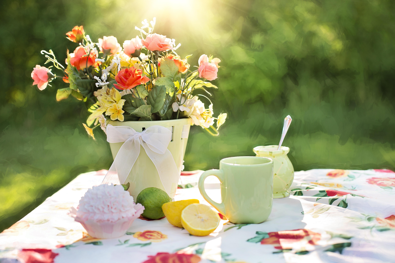 природа цветы чашка  № 1486748 бесплатно