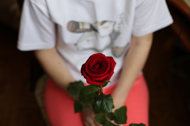 Красивые картинки роз с девушкой без лица