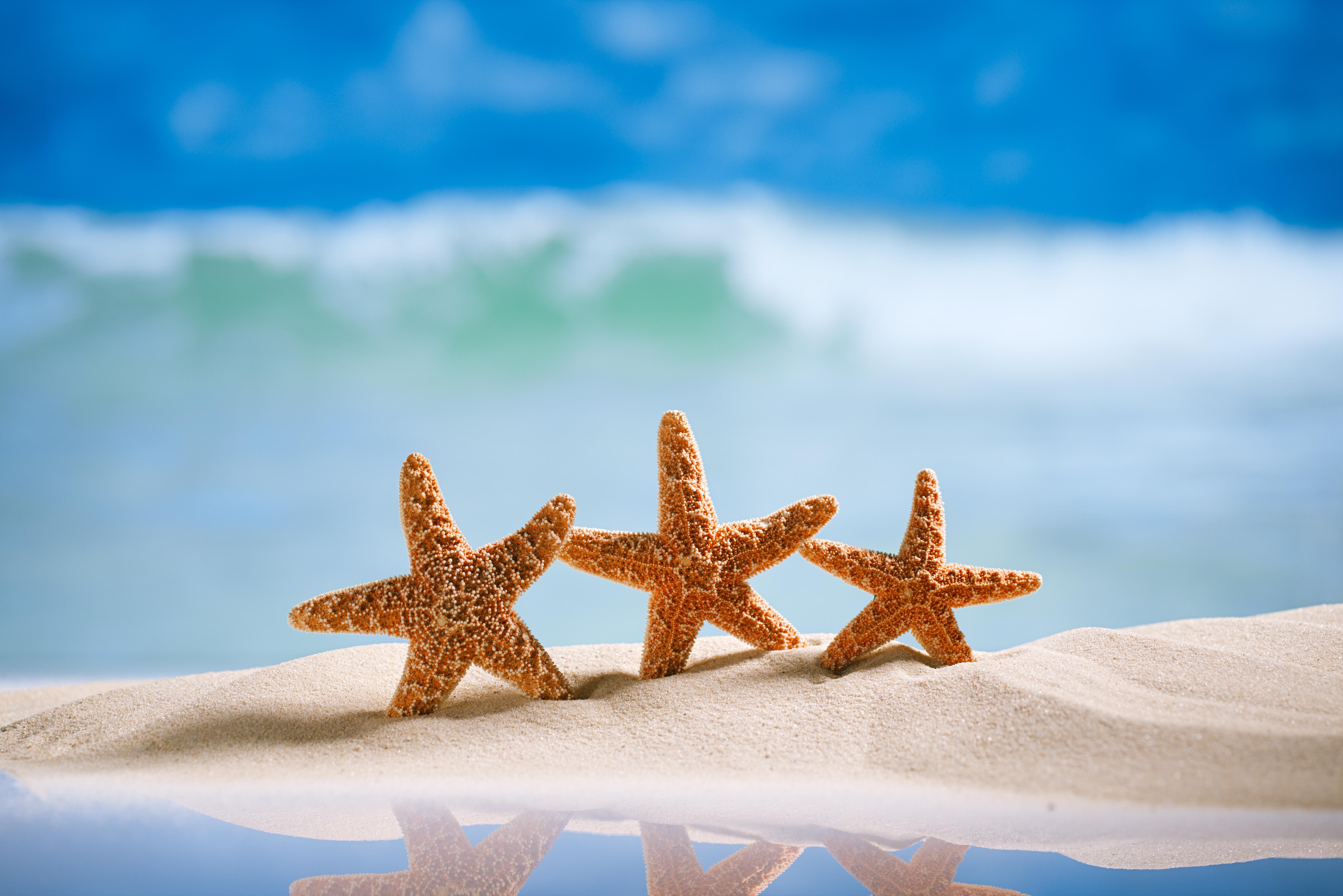 Днем рождения, открытка лето море