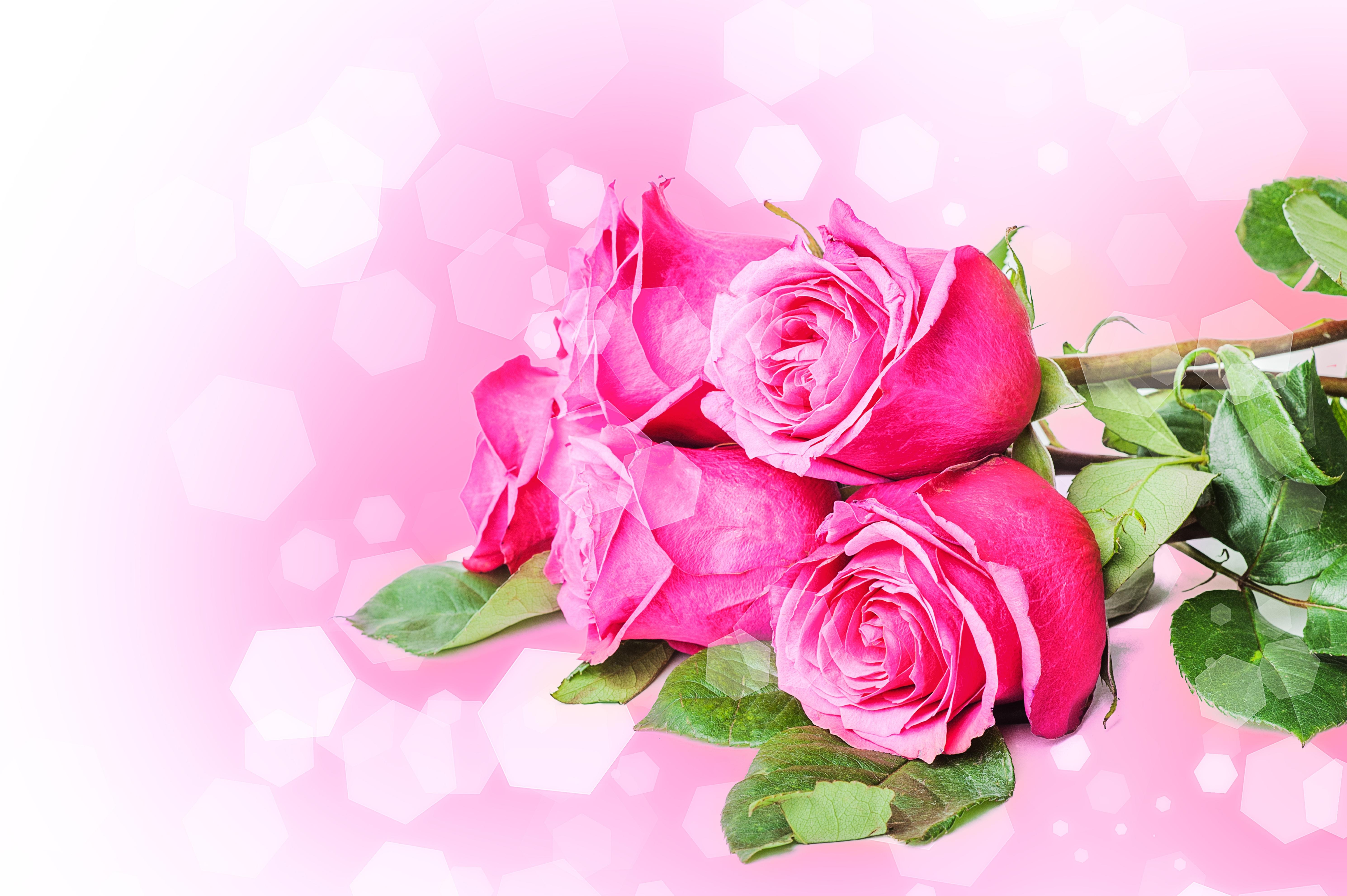 Открытки розы для мамы