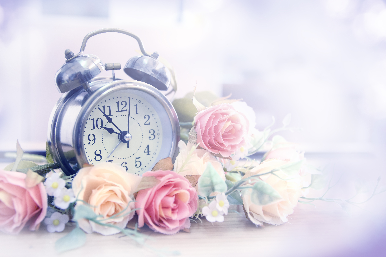 природа цветы часы  № 1520743 без смс