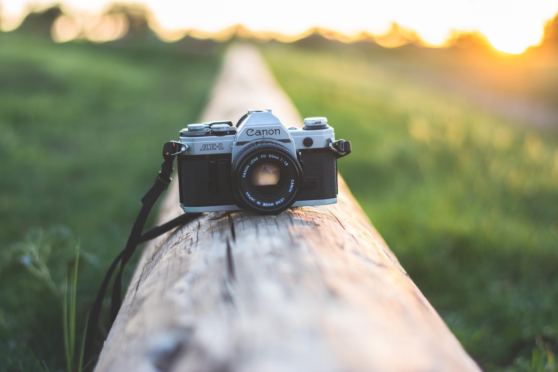 просвещения этого сайт для фотографов блог стало понятно, что