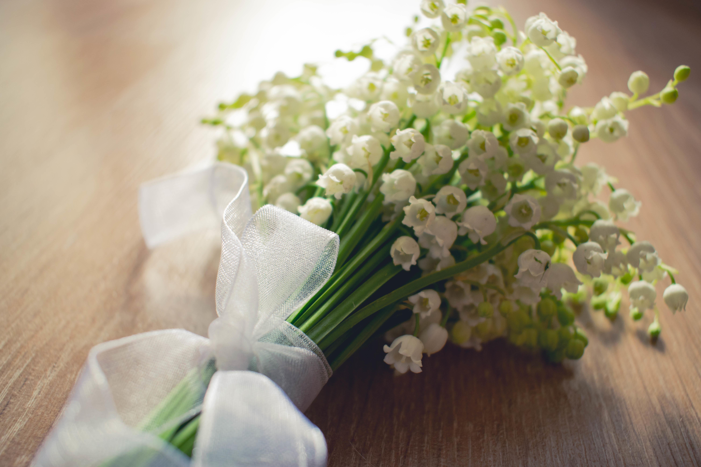 цветы святости ландыши широкоформатные картинки фото картинки бесплатно видеоальбом