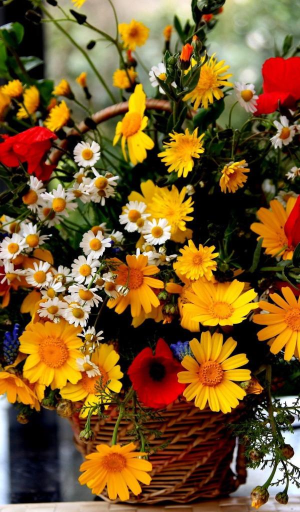 красивые осенние цветы картинки вертикальные результат даёт