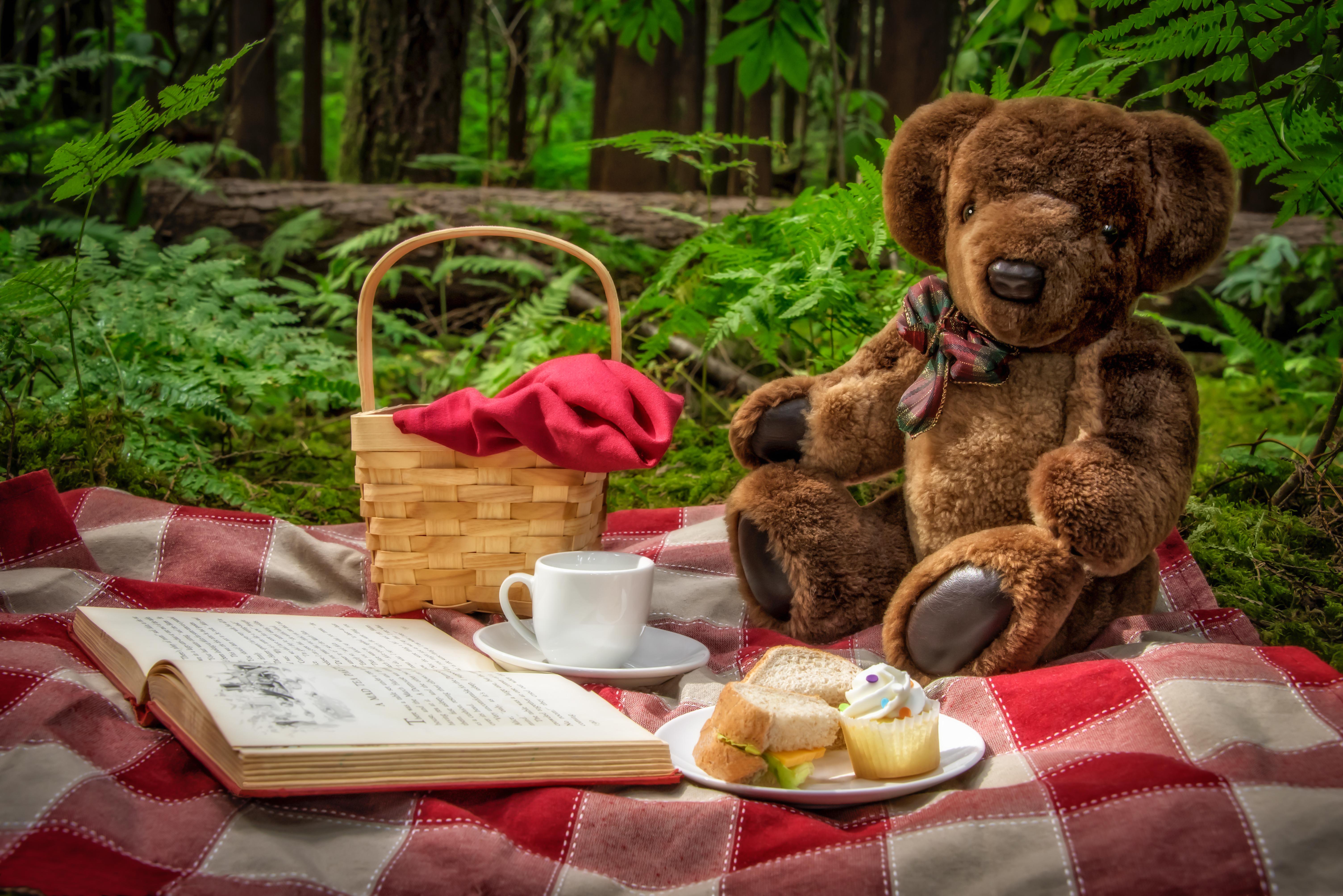 участков картинки чай и медведь его сюрреалистических