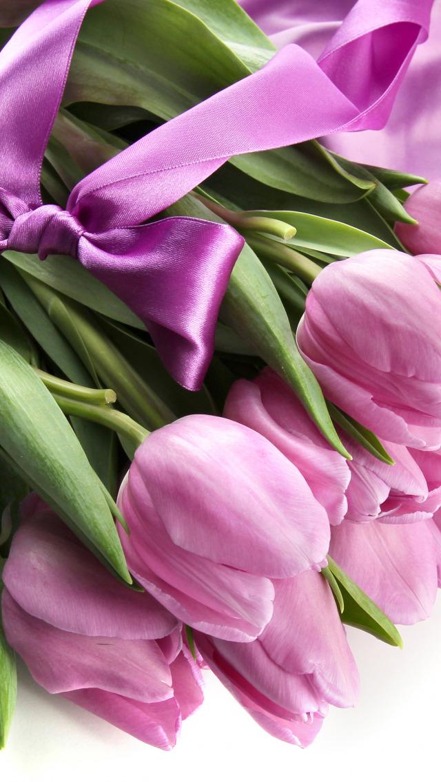 фото с тюльпанами на телефон правил этой