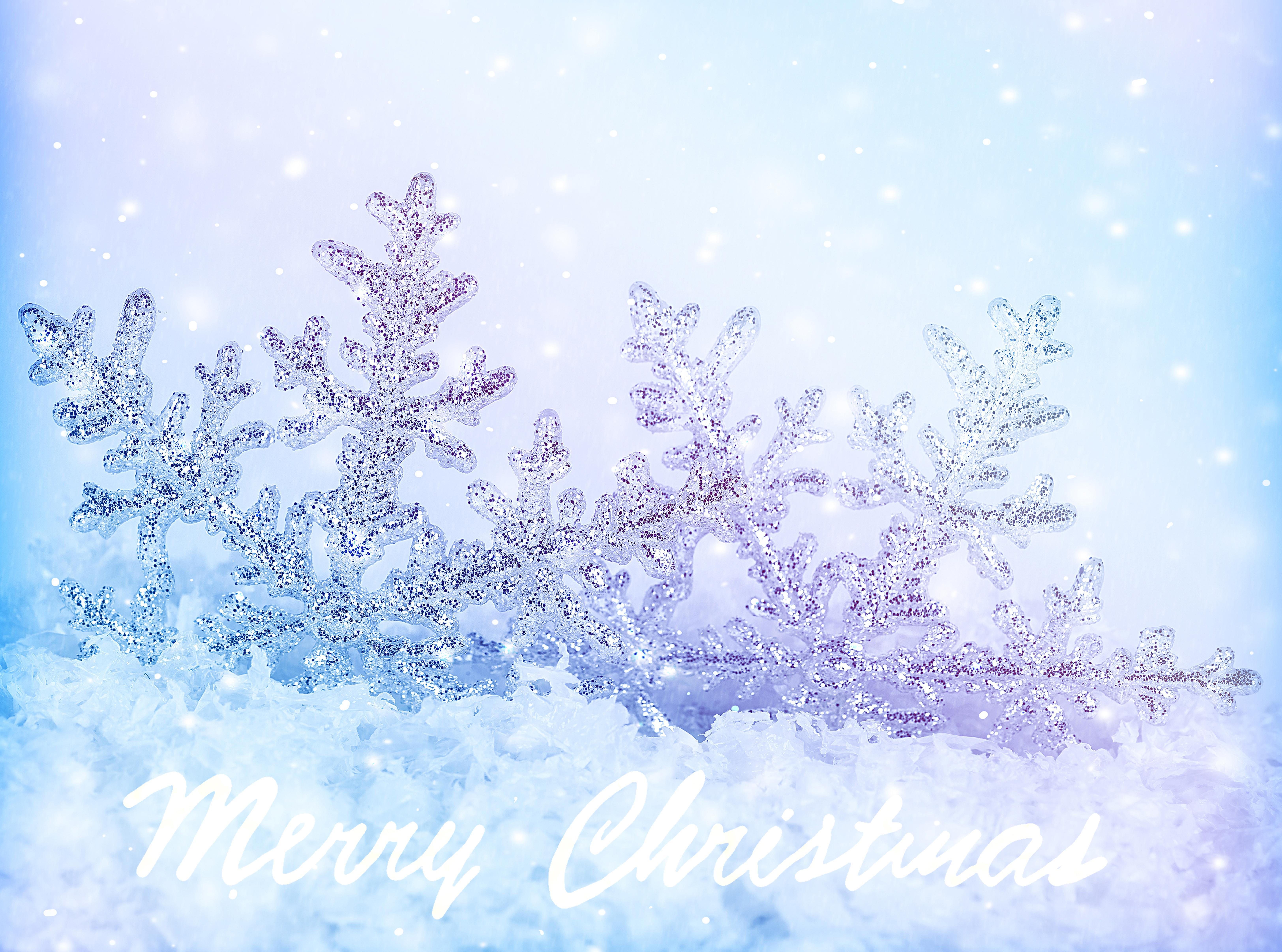 рождество,снежинки,снег,пингвиненок  № 442242 загрузить