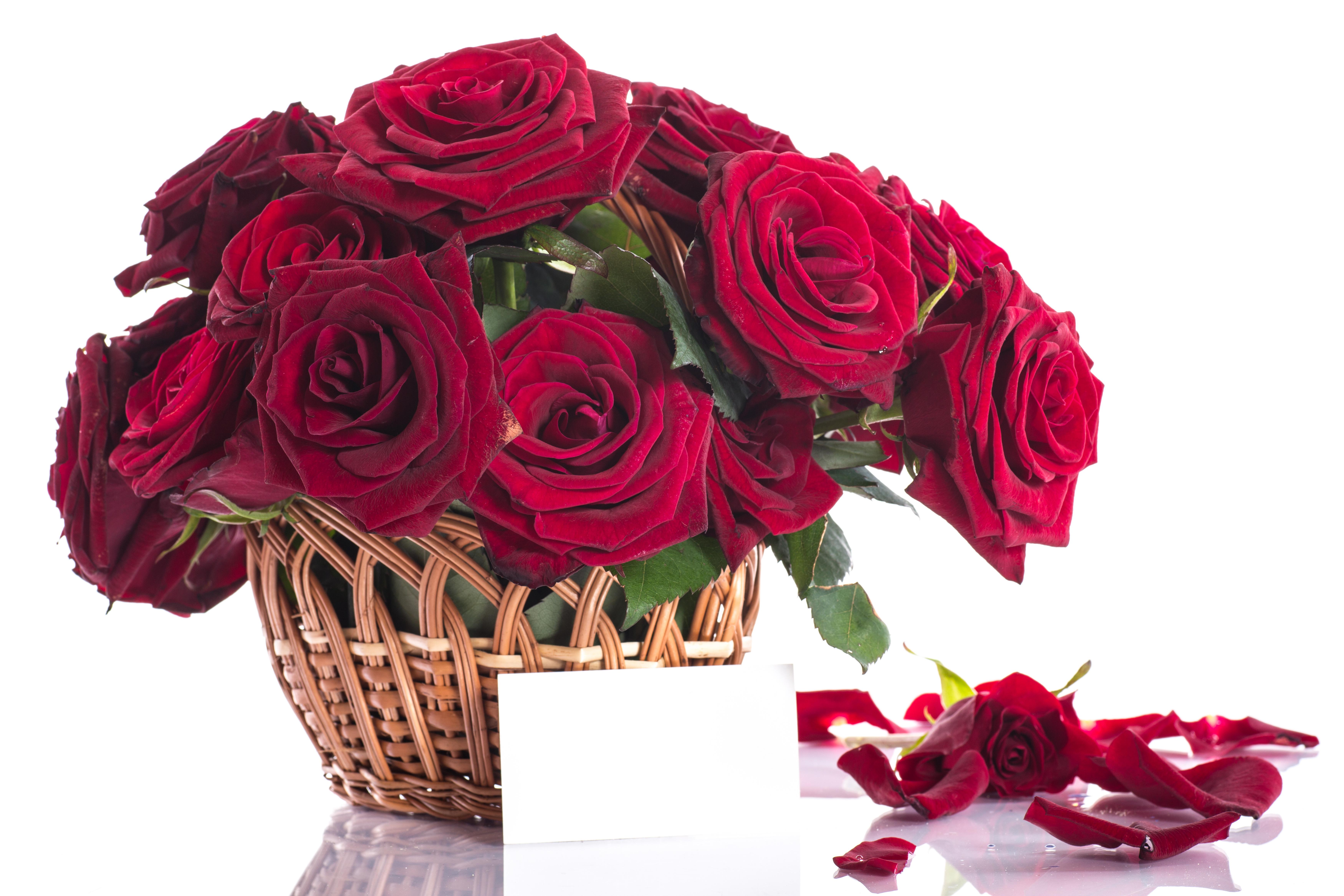 Букет роз на открытку, открытка