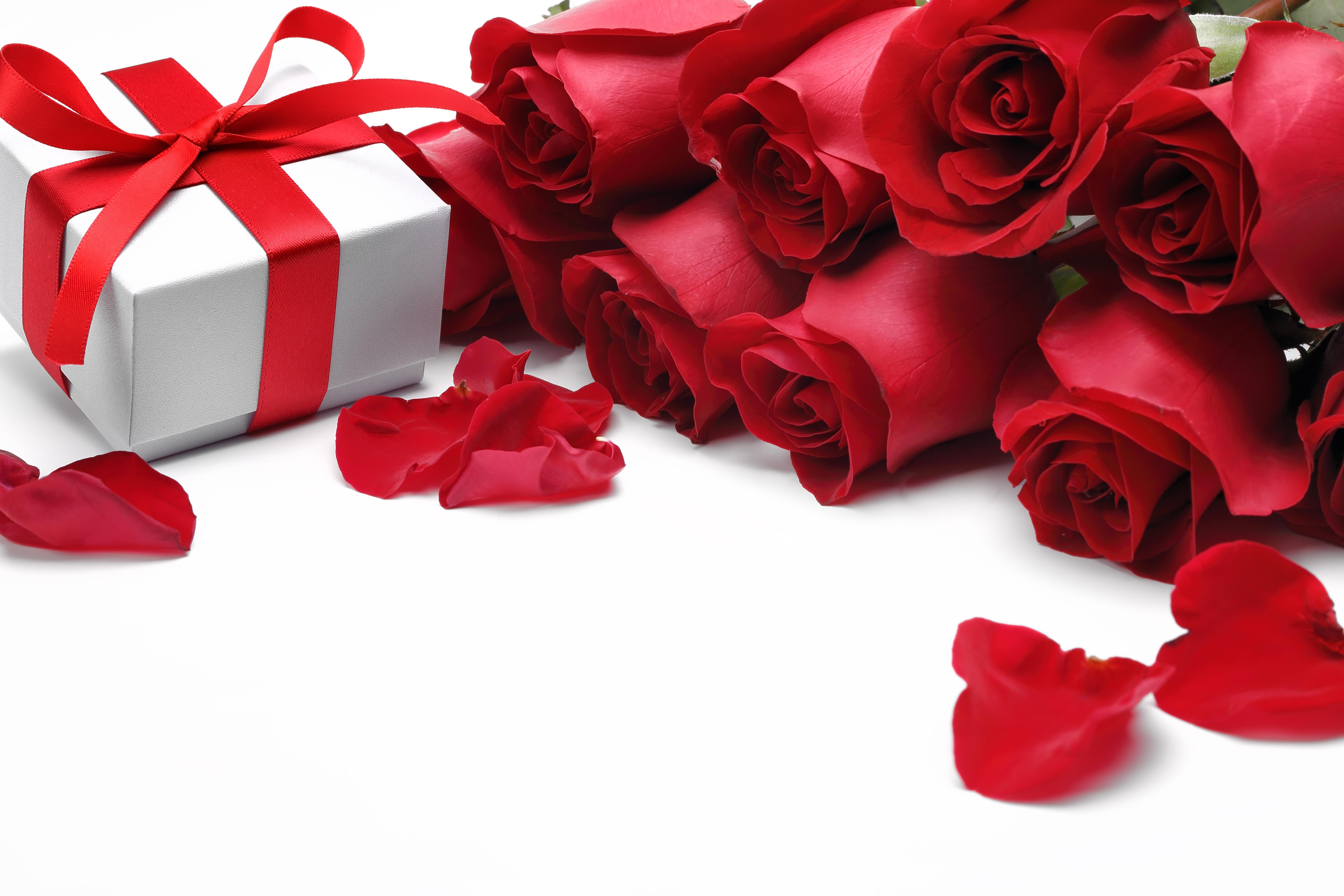 Картинка подарить розы, картинка