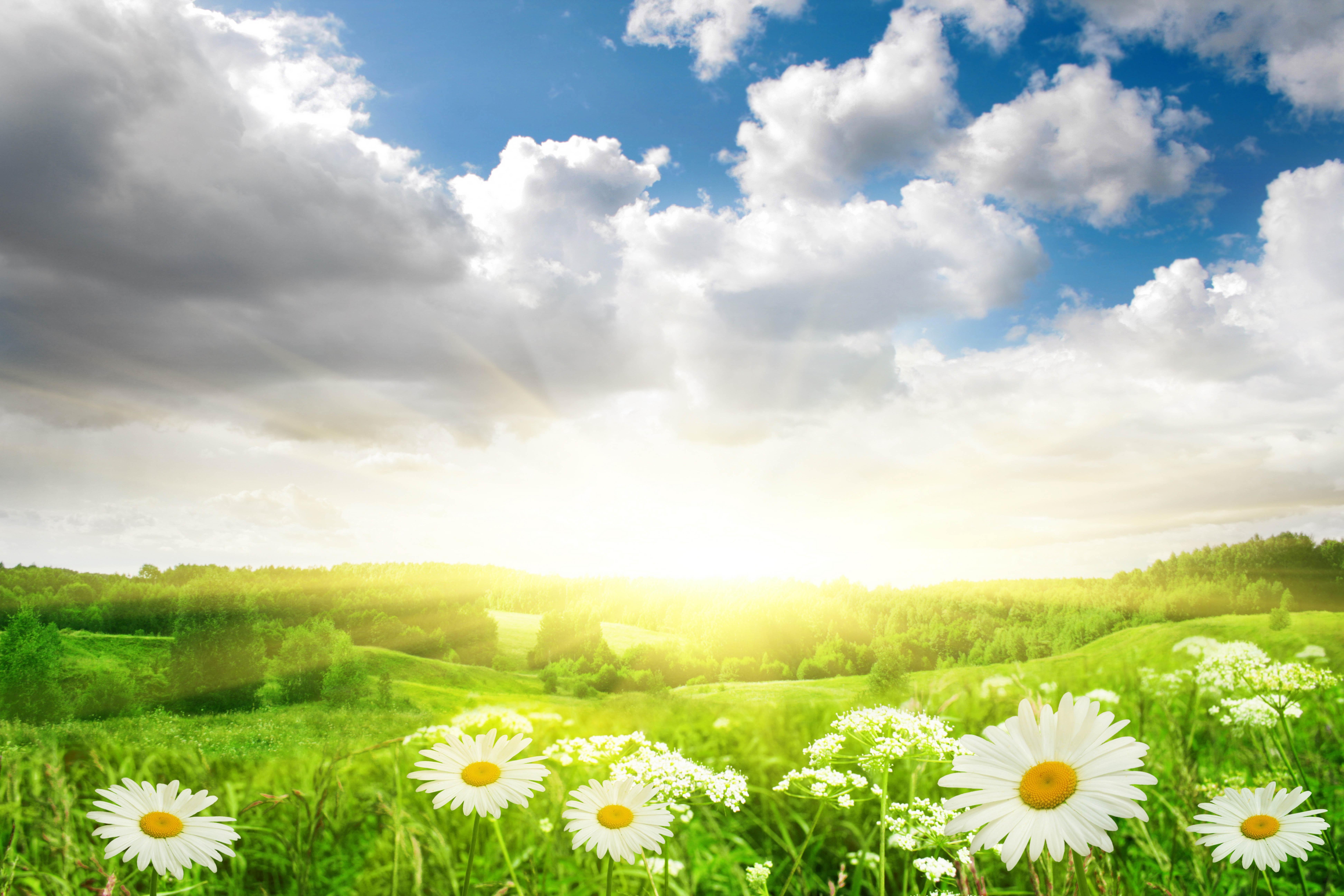 Открытки фоны солнечные, карусель