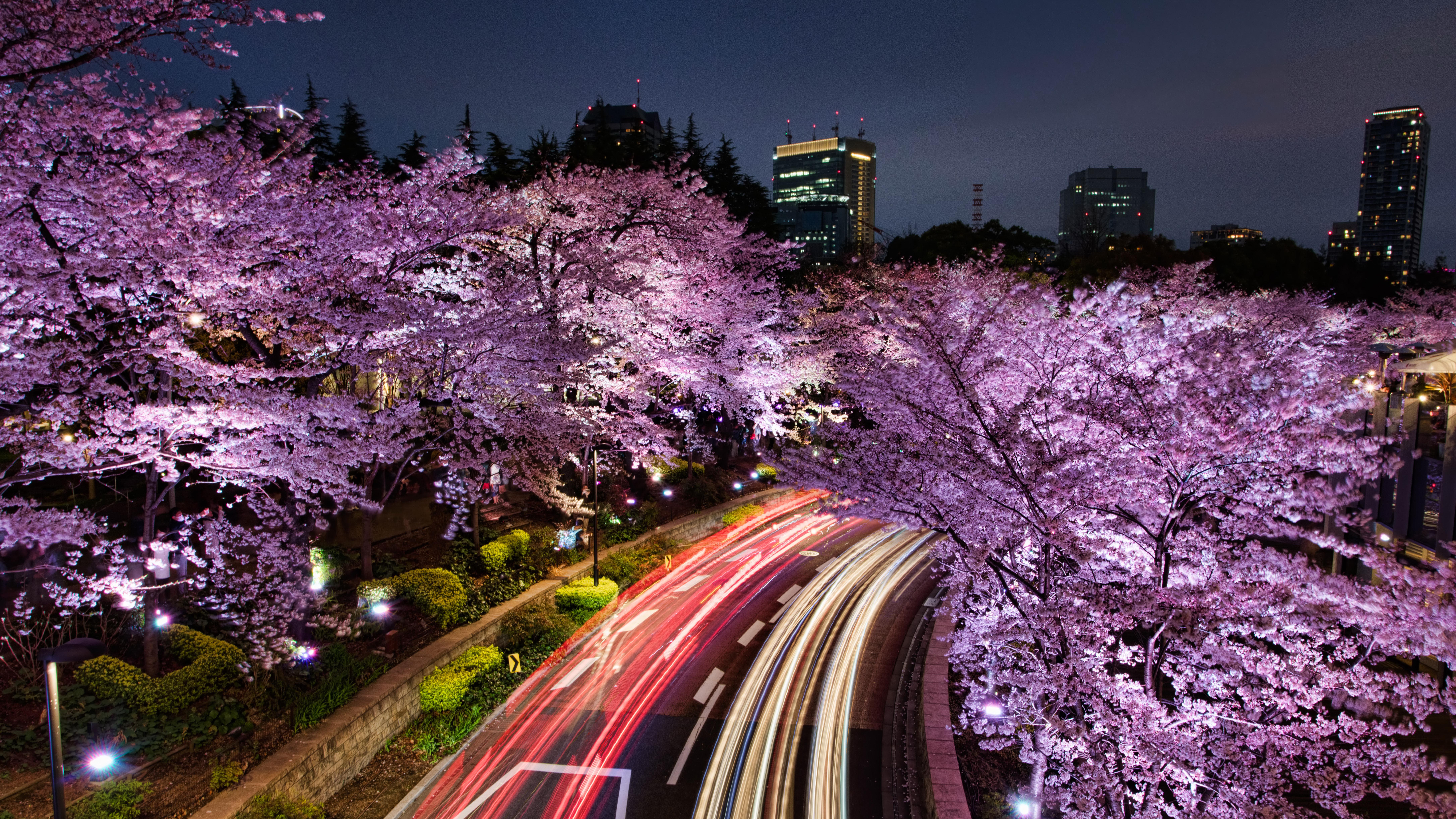 думаете, картинка красота разные японии кадр анастасия
