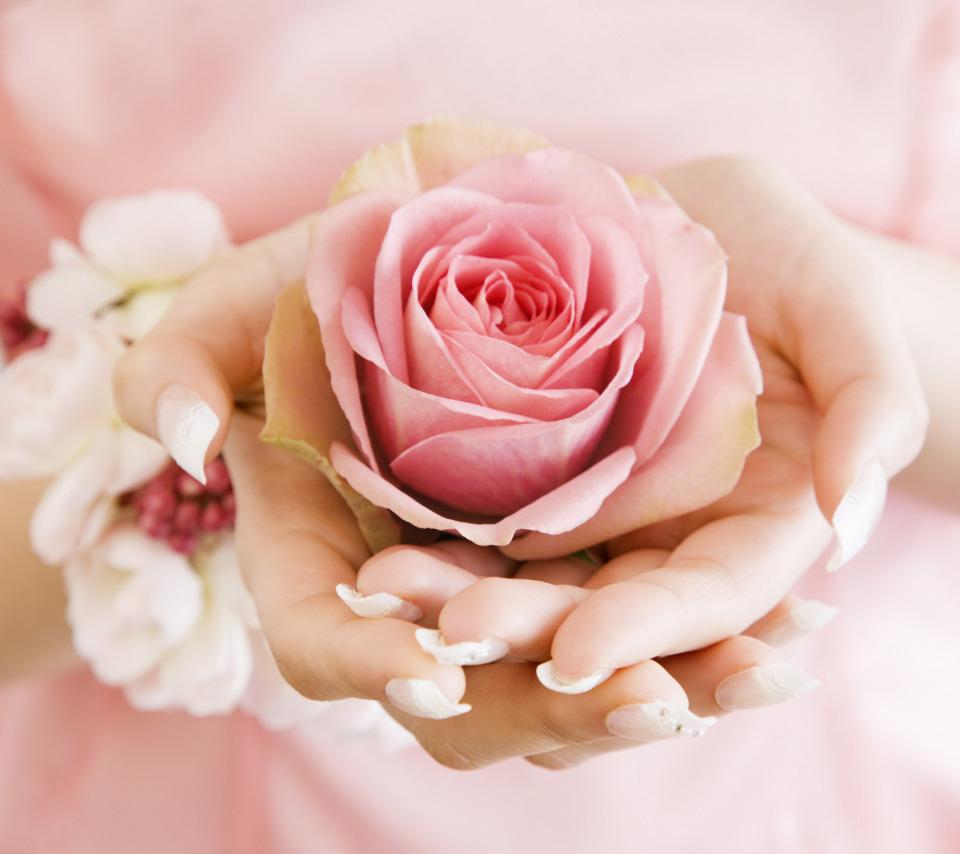 Картинка надписью, открытка в руках цветы