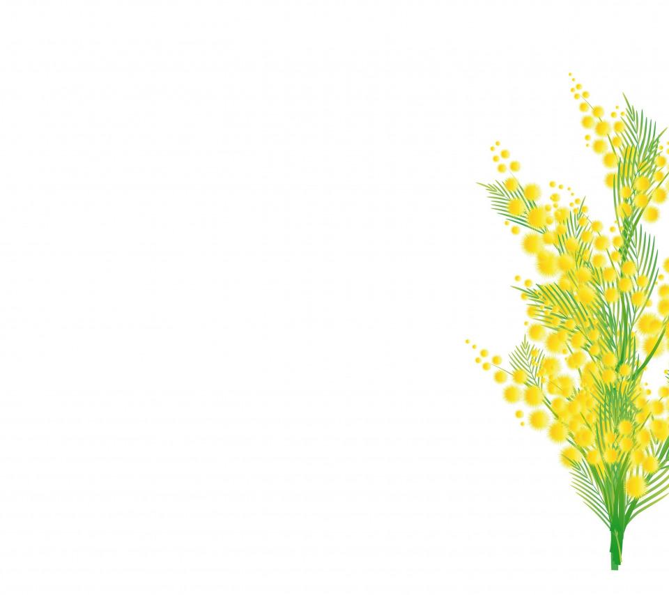 картинки с мимозой для распечатки цветные тех пор