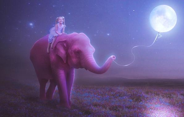 Картинка небо, звезды, счастье, цветы, ночь, улыбка, настроение, розовый, луна, рисунок, слон, ребенок, шарик, луг, девочка, …