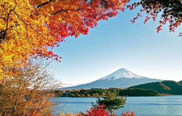 Картинка море, осень, вода, деревья, горы, природа, озеро, Фудзияма