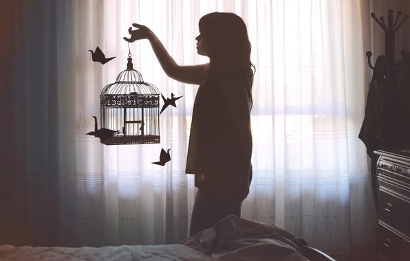Картинка девушка, клетка, журавлики