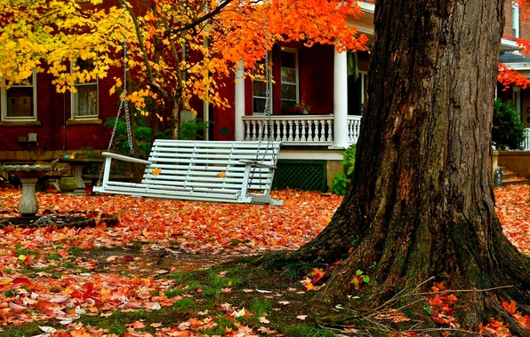 Картинка дорога, осень, лес, трава, листья, деревья, природа, дом, парк, colors, colorful, house, grass, forest, road, ...