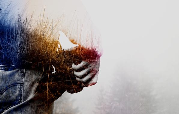Фото обои person, abstract, field