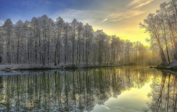 Картинка зима, иней, лес, река, восход, утро