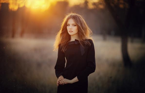 Картинка лес, трава, взгляд, закат, секси, поза, милая, волосы, Девушка, фигура, платье, брюнетка, girl, шатенка, grass, …