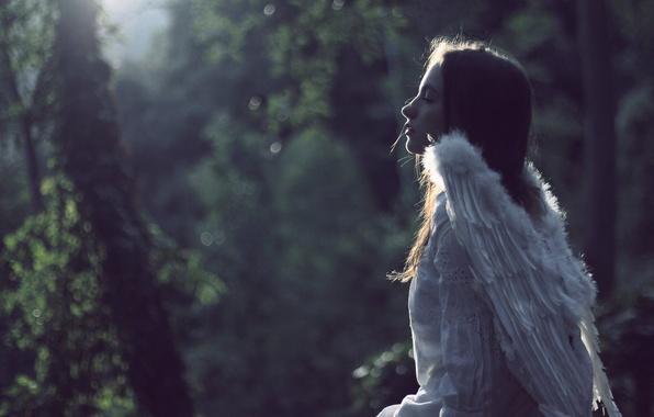 Картинка настроение, крылья, ангел, девочка, боке