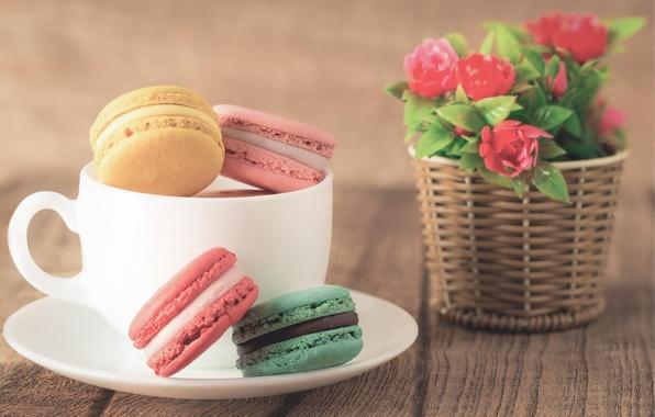 Картинка кофе, colorful, печенье, десерт, flowers, cup, sweet, coffee, dessert, cookies, macaron, макарун, almond