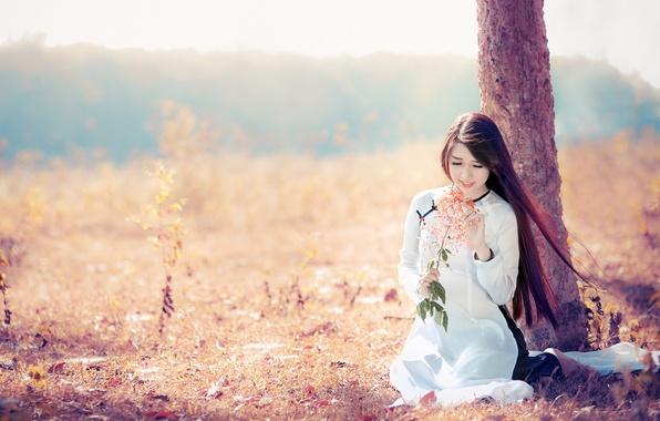 Картинка девушка, свет, цветы, азиатка