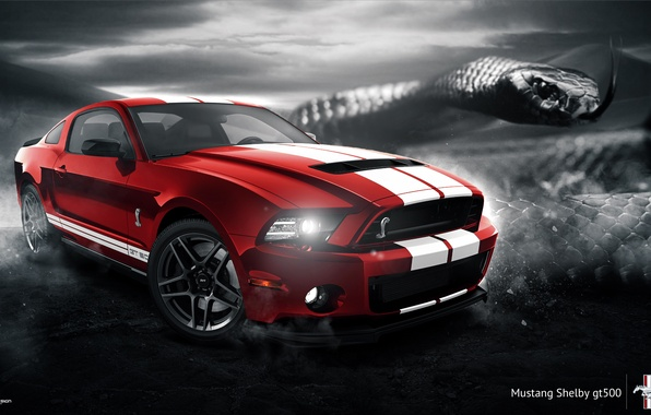 Картинка Mustang, Ford, Shelby, GT500, Muscle, Red, Car, Snake, 2014