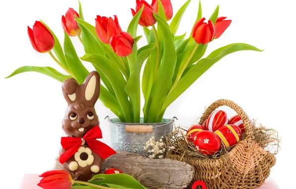 Картинка яйца, пасха, тюльпаны, red, flowers, tulips, eggs, easter, bunny