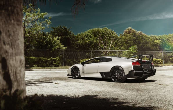 Картинка Lamborghini, supercar, Murcielago, SuperVeloce, LP 670-4