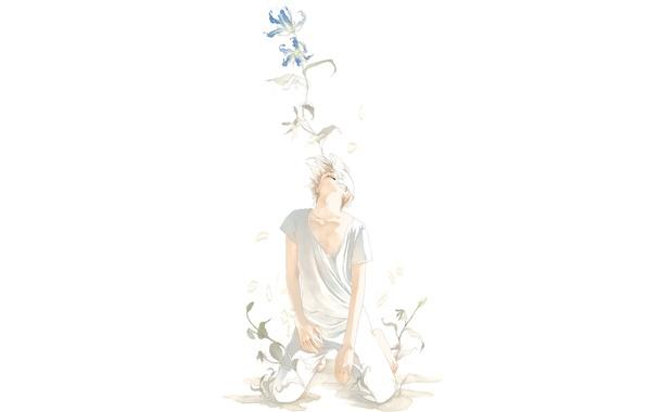Картинка цветы, арт, парень, на коленях