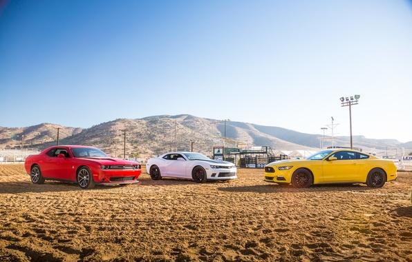 Картинка фон, Mustang, Ford, Chevrolet, Форд, Додж, Камаро, Шевроле, Мустанг, Dodge, Camaro, Challenger, Muscle car, Мускул …